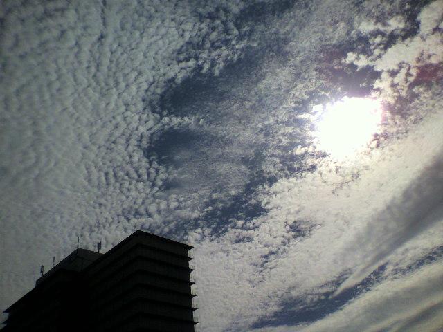 羊雲(高層雲)